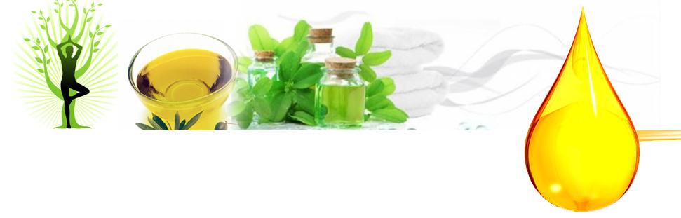 Kalonji Oil Applications – Kalonji Oil for Hypertension, Diabetes